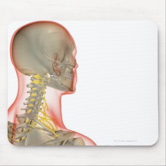 Nerves of the Neck 2 Mouse Pad