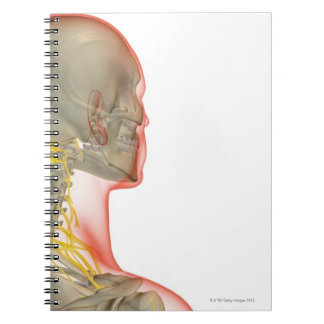 Nerves of the Neck 2 Notebook