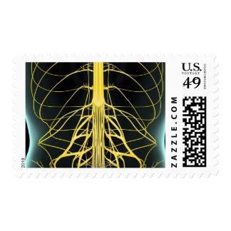 Nervios del más de espalda sello postal