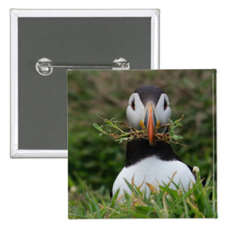 Nest Builder Puffin Pinback Button