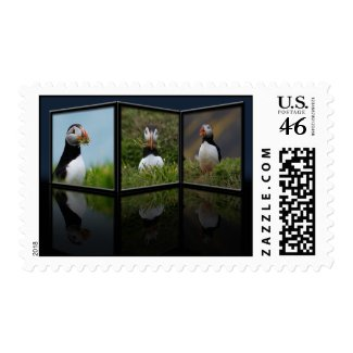 Nest Building Puffin Postage stamp