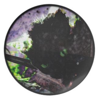 Nest • Egg • Kitty Melamine Plate