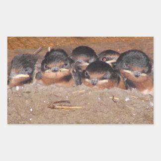 Nest full of baby barn swollows rectangular sticker