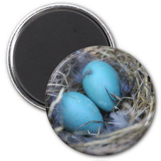 Nest Magnet