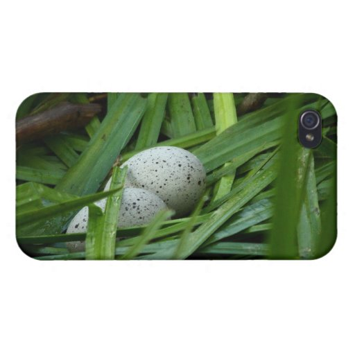 nest of a bald coot case for iPhone 4