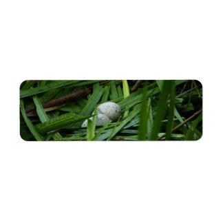 nest of a bald coot return address label