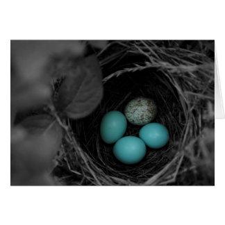 Nest parasitism card