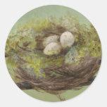 Nest Sticker