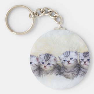 Nest with four young tabby cats in a row keychain