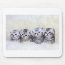 Nest with four young tabby cats in a row mouse pad