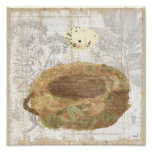 Nest with Speckled Egg Poster