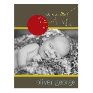 Nesting Bird & Family Baby Photo Announcement Postcard