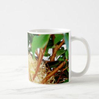 Nesting - birds of Brazil Coffee Mug