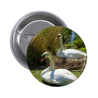 Nesting Pinback Button