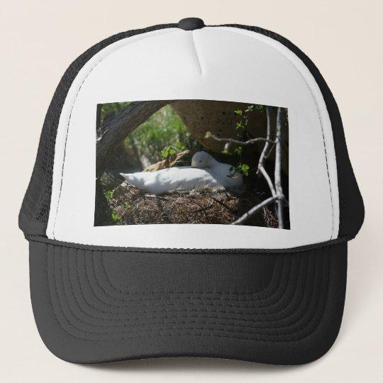 Nesting Coscoroba Swan Trucker Hat