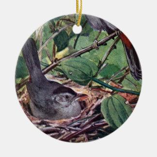 Nesting Gray Catbirds Ceramic Ornament