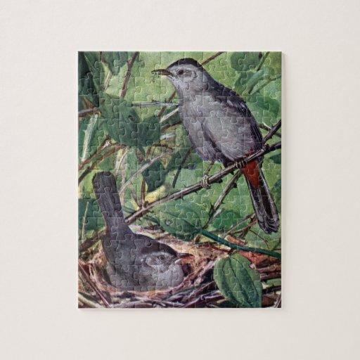 Nesting Gray Catbirds Jigsaw Puzzle