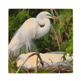 Nesting Great Egret Birds Wood Coaster