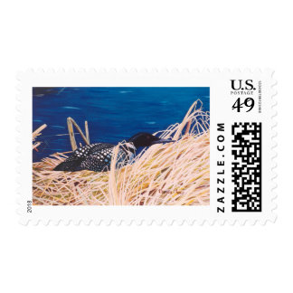 Nesting Loon Postage Stamps