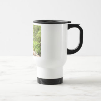 Nesting Loon Travel Mug