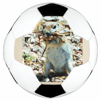 """Nesting Momma"" Ground Squirrel Soccer Ball"