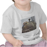 Nesting Mourning Dove T Shirt