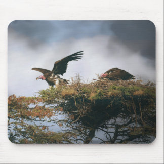 Nesting Vultures Mousepad