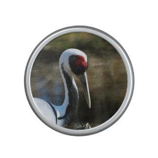 Nesting White Naped Crane Speaker