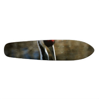 Nesting White Naped Crane Skateboard Deck