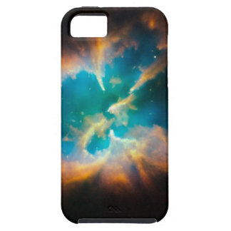 Nestled Within iPhone 5 Cases