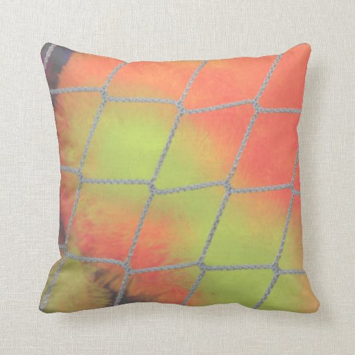 Net background with orange and yellow furry image pillows