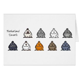Netherland Dwarf Colours Greeting Cards