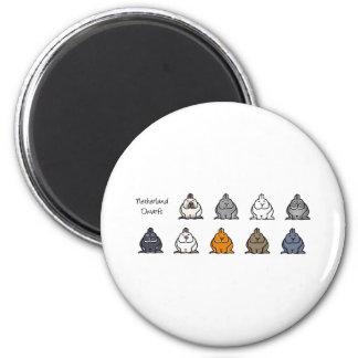 Netherland Dwarf Colours Fridge Magnet