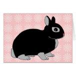 Netherland Dwarf Rabbit Card