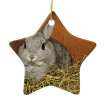 Netherland Dwarf Rabbit Ceramic Ornament