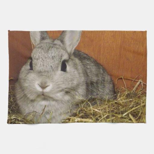 netherland rabbit kitchen towel zazzle