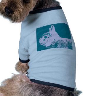 Netherland dwarf rabbit teal pet shirt