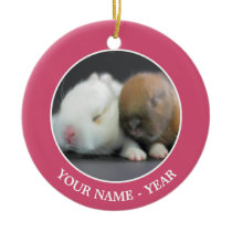 Netherland Dwarf Rabbits Ceramic Ornament
