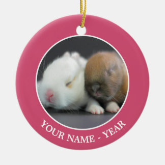 Netherland Dwarf Rabbits Ceramic Ornament