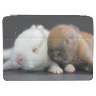 Netherland Dwarf Rabbits iPad Air Cover
