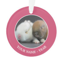 Netherland Dwarf Rabbits Ornament