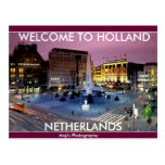NETHERLAND oxes Postcard