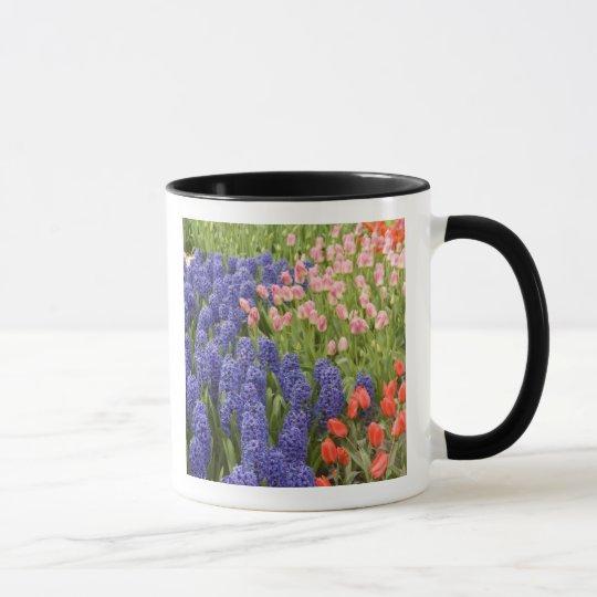 Netherlands aka Holland), Lisse. Keukenhof 2 Mug