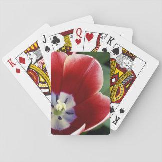 Netherlands (aka Holland), Lisse. Keukenhof 3 Playing Cards