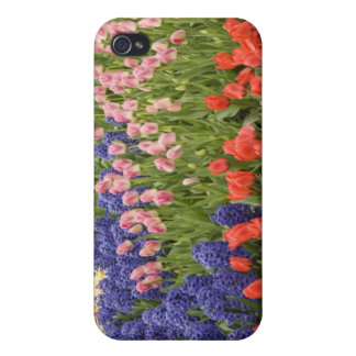 Netherlands aka Holland), Lisse. Keukenhof 8 iPhone 4 Cases