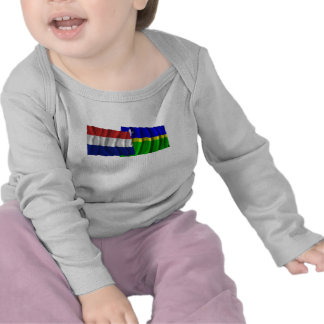 Netherlands & Flevoland Waving Flags T Shirt