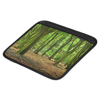 Netherlands Forest iPad Sleeves