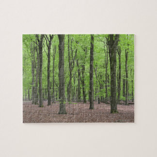 Netherlands Forest Jigsaw Puzzle