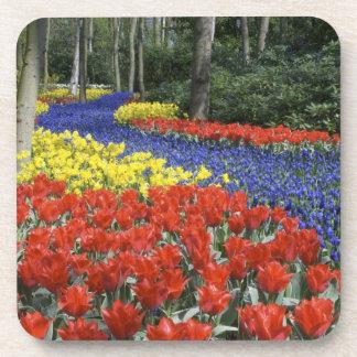 Netherlands, Holland, Lisse, Keukenhof Gardens Coaster