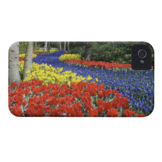 Netherlands, Holland, Lisse, Keukenhof Gardens iPhone 4 Case-Mate Case